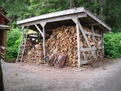Firewood Under Shelter