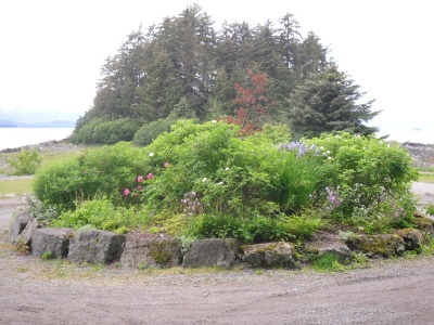A Flower Patch and an Island